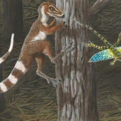 1733_sinosauropteryx_alex_lovegrove