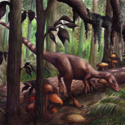 1737_sinosauropteryx_emily_willoughby