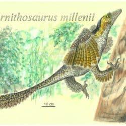 1745_sinornithosaurus_pedro_salas