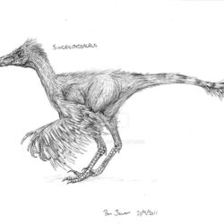 1746_sinornithosaurus_ben_jewer