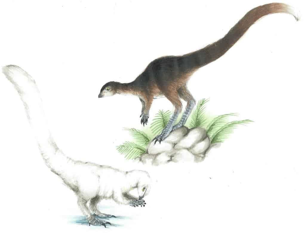 Leaellynasaura by Kirby