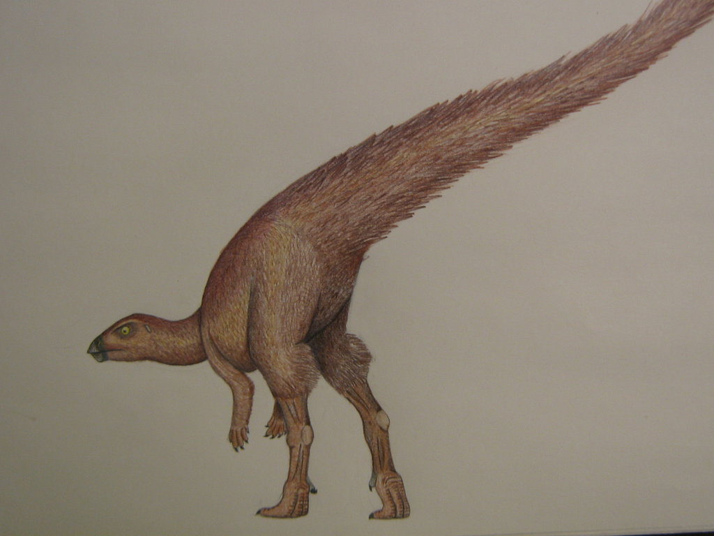 Leaellynasaura by Fredrick Alexander