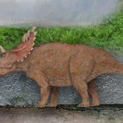 1773_kosmoceratops_sameerprehistorica