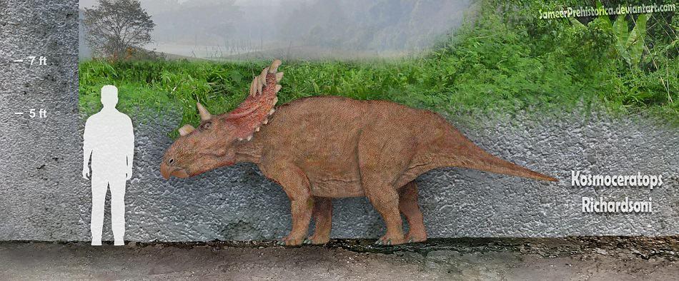 Kosmoceratops by SameerPrehistorica