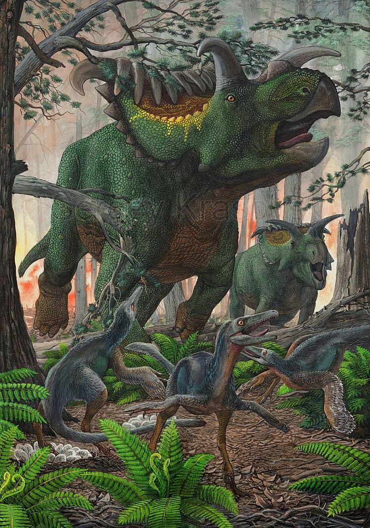Kosmoceratops by Sergey Krasovskiy