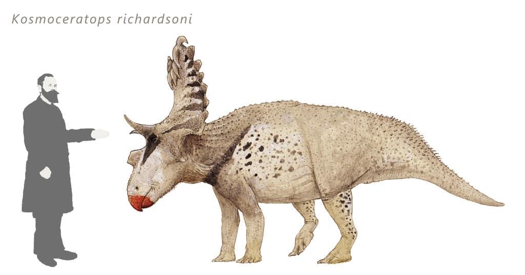Kosmoceratops by Joschua Knuppe