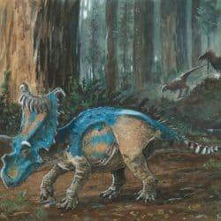 1776_kosmoceratops_tuomas_koivurinne