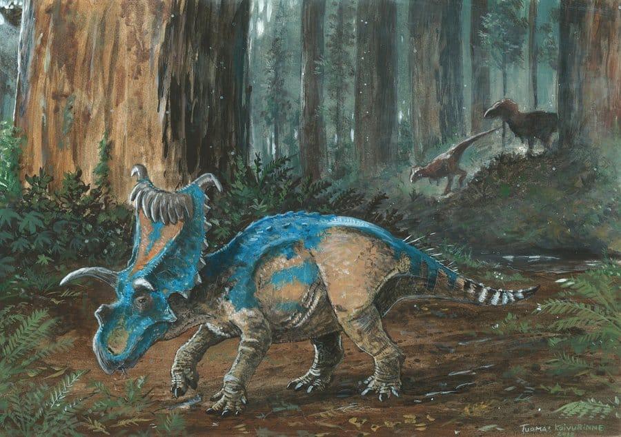 Kosmoceratops by Tuomas Koivurinne