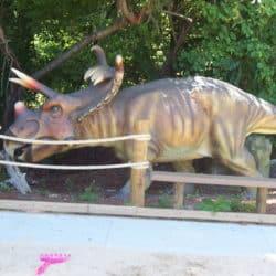1778_kosmoceratops_matt